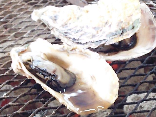 牡蠣うま~♪